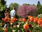 Frühling in Weinheim an der Bergstraße